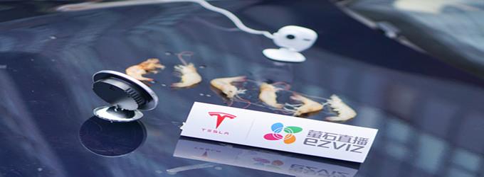 豪车引擎盖烤大虾,据说这周杭州人的菜谱是这样的?!